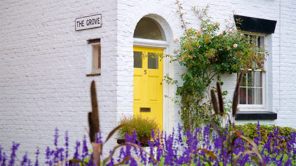 Lymm featuring a house, wildflowers and signage