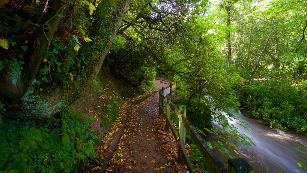 Lymm which includes a river or creek and a garden