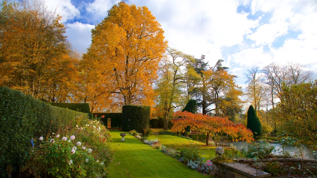 Coton Manor Gardens which includes wildflowers, a park and autumn leaves