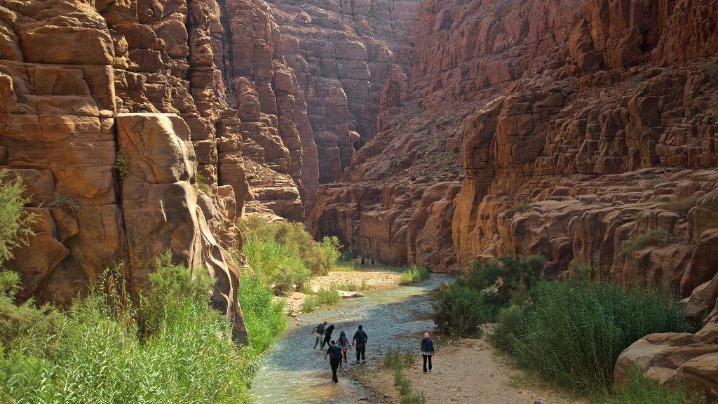 Mujib Nature Reserve featuring a river or creek and a gorge or canyon as well as a small group of people