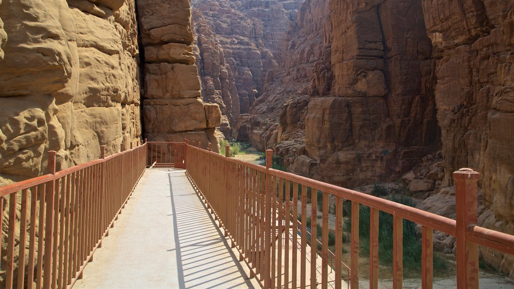 Mujib Nature Reserve featuring a gorge or canyon