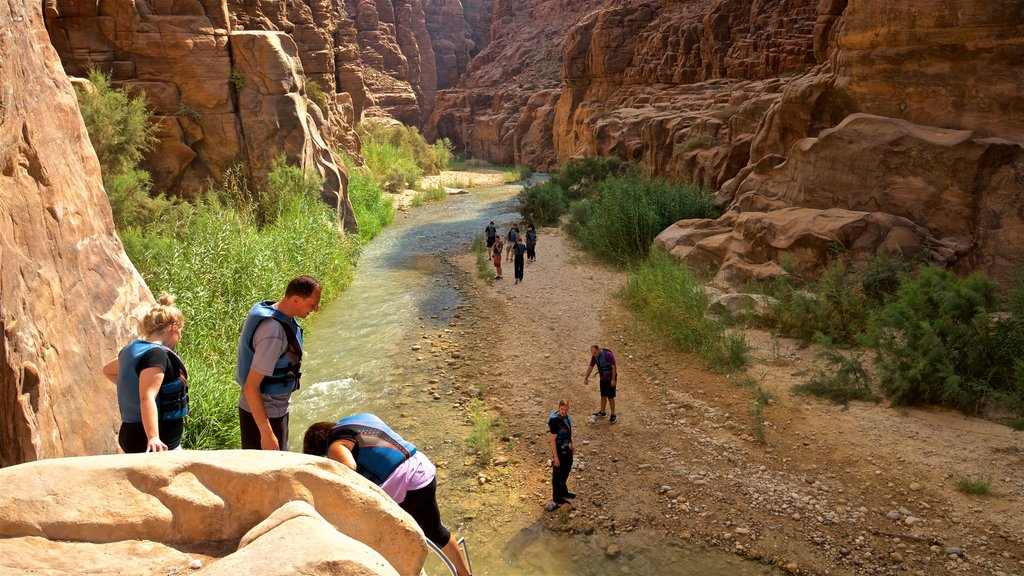 Mujib Nature Reserve showing a gorge or canyon as well as a small group of people