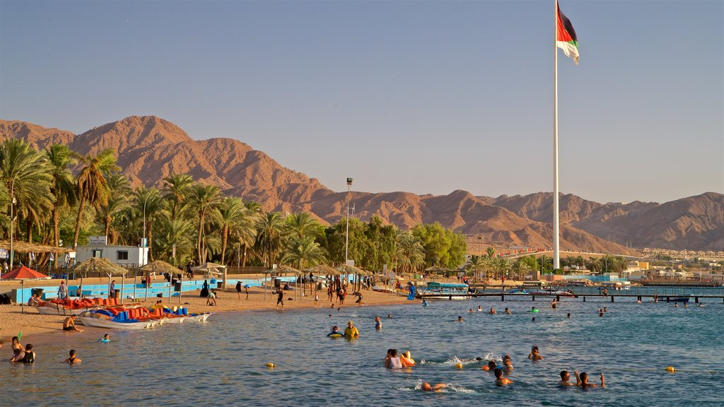 Aqaba showing a sandy beach, tropical scenes and swimming