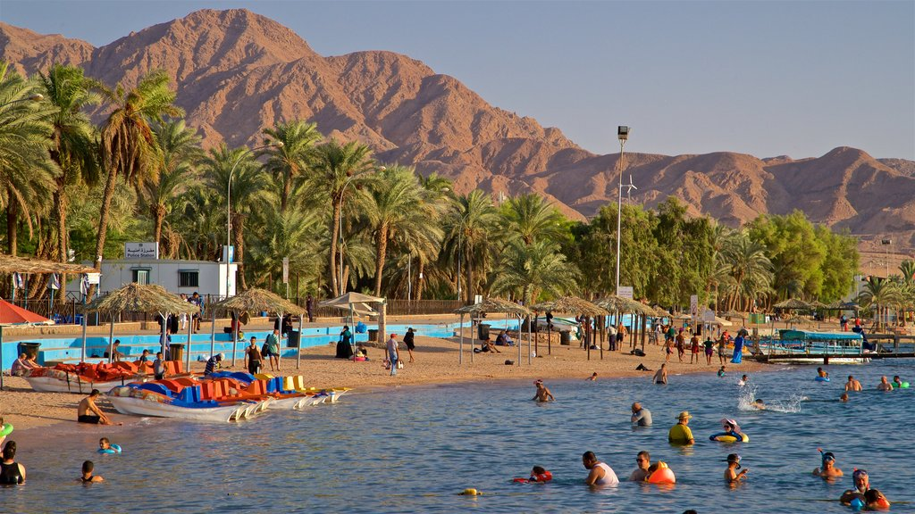 Aqaba featuring tropical scenes, general coastal views and swimming