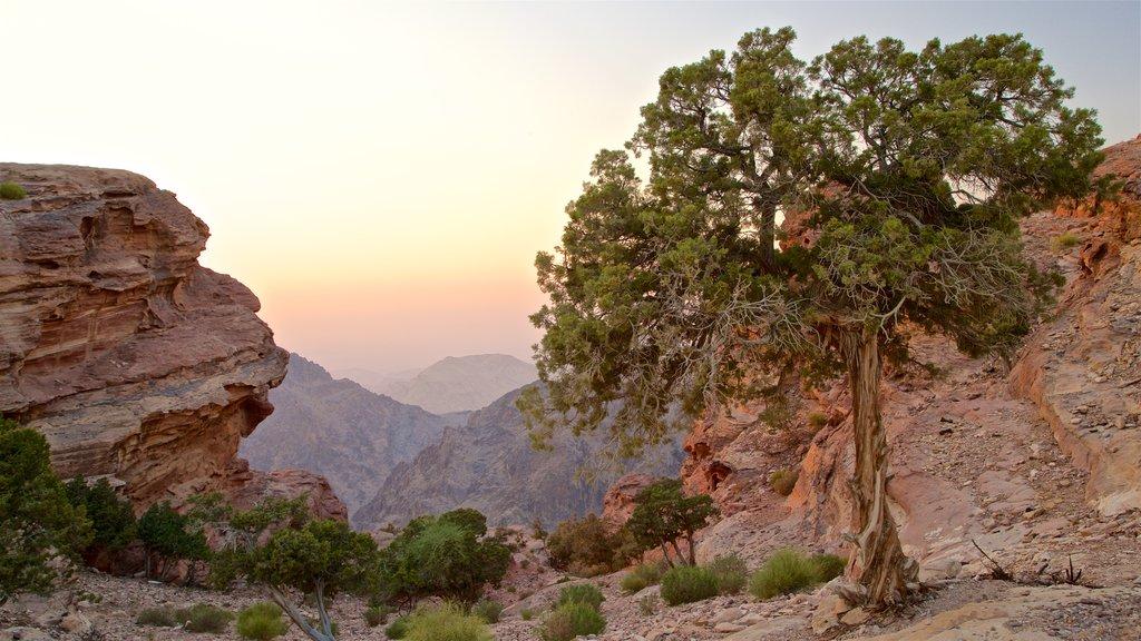 Petra ofreciendo un barranco o cañón y una puesta de sol