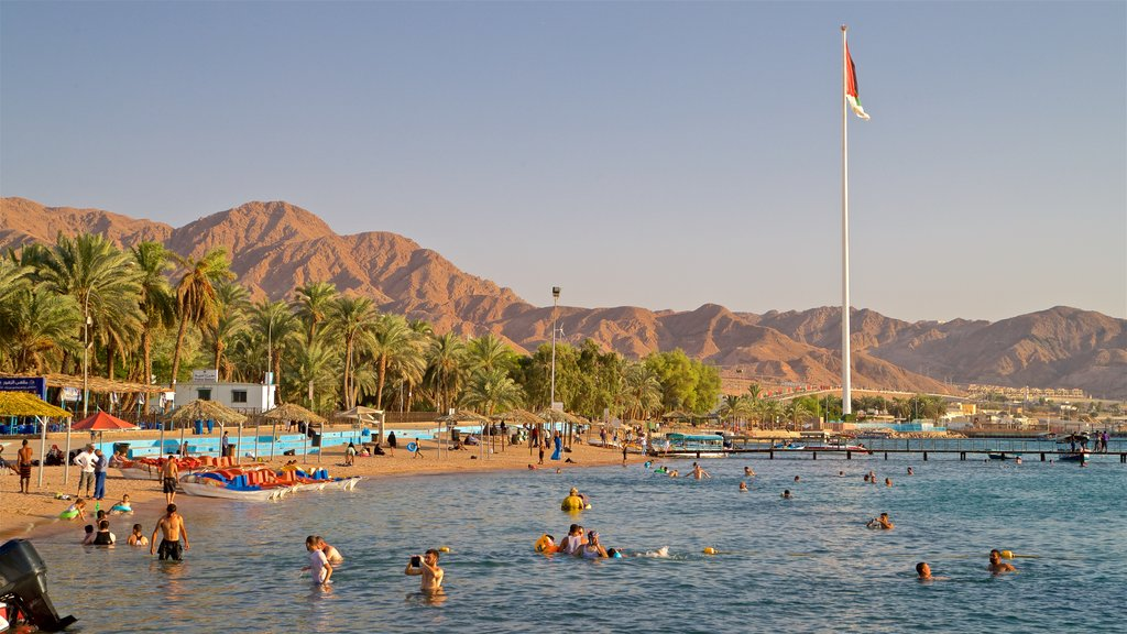 Aqaba featuring swimming, tropical scenes and general coastal views