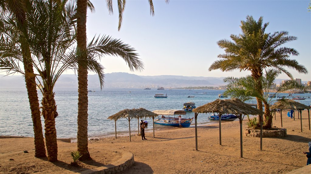 Aqaba showing tropical scenes, a beach and general coastal views