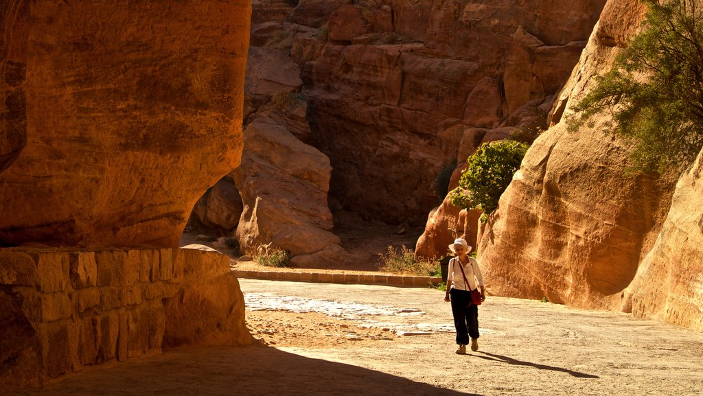 Wadi Musa which includes a gorge or canyon as well as an individual femail