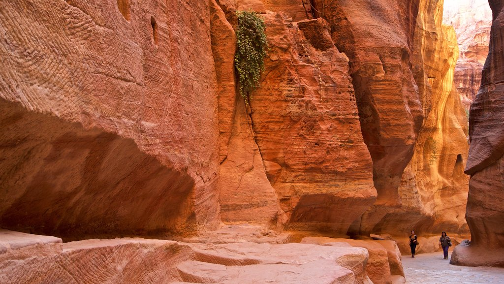Wadi Musa which includes a gorge or canyon as well as a couple