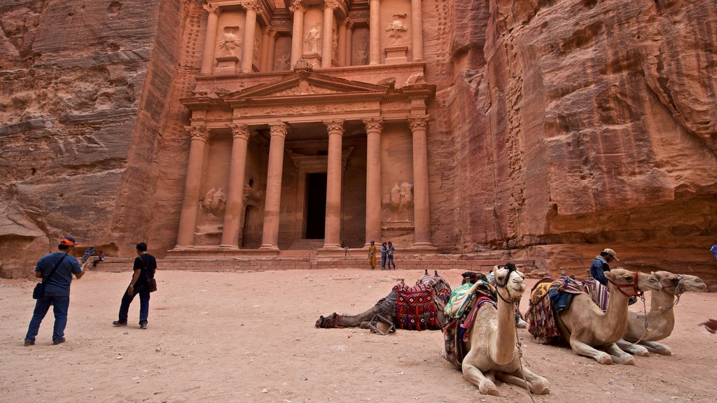 Wadi Musa which includes heritage architecture, a gorge or canyon and land animals