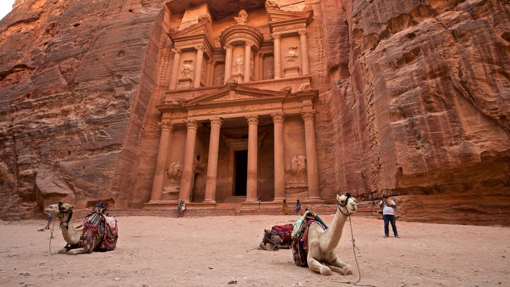 Wadi Musa featuring heritage architecture, land animals and a gorge or canyon