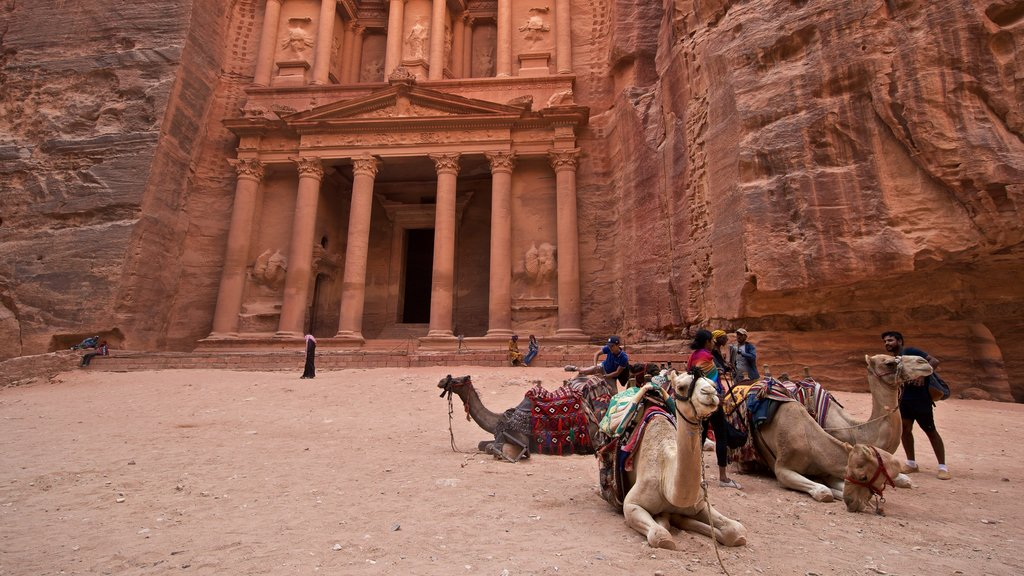 Wadi Musa which includes land animals, a gorge or canyon and heritage architecture