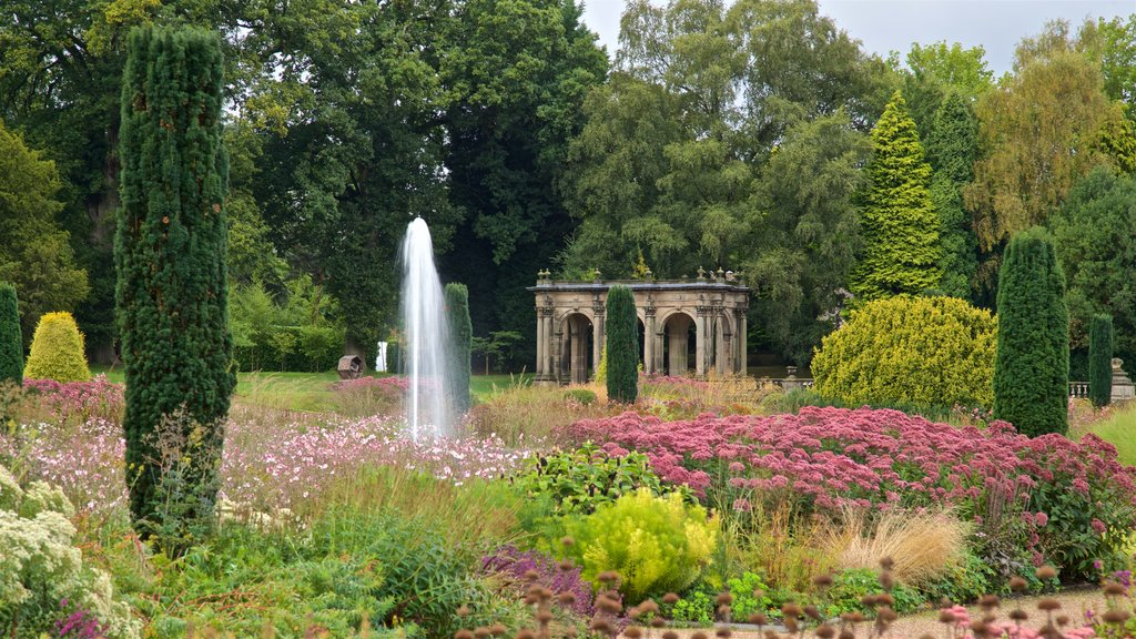 Trentham Gardens featuring a garden and wildflowers