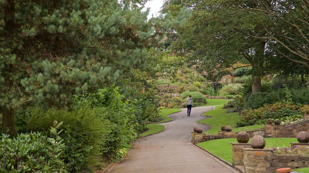 Burslem Park featuring a garden