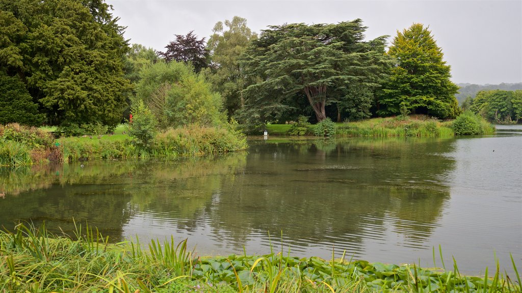 Trentham Gardens showing a pond