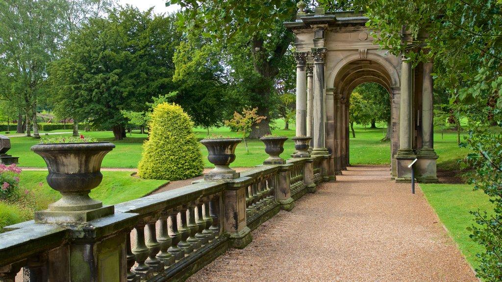 Trentham Gardens featuring a park