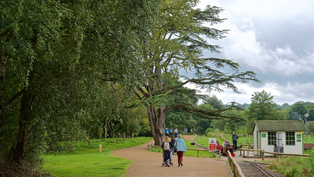 Trentham Gardens which includes a garden as well as a couple