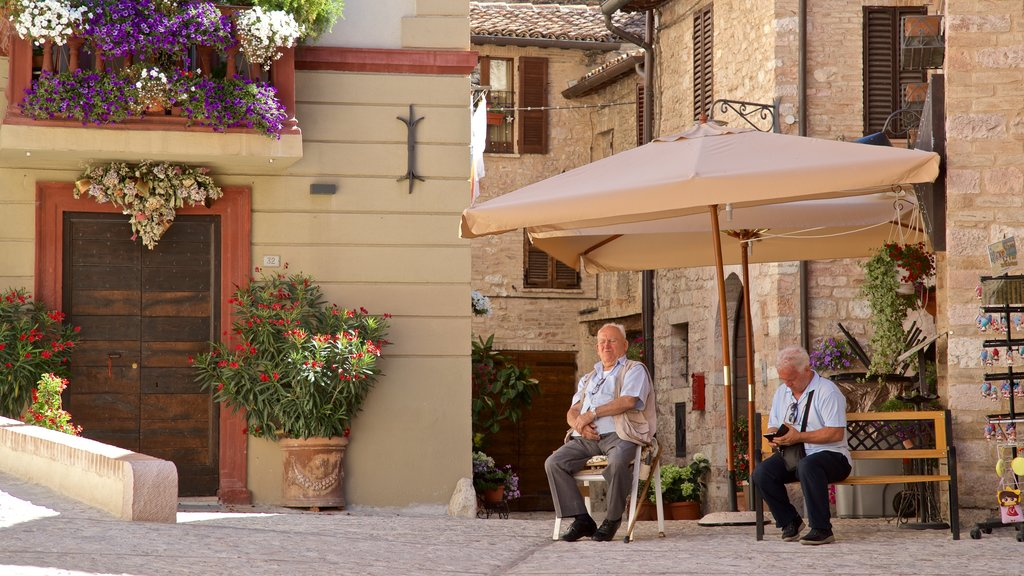 Spello showing street scenes and flowers as well as a couple