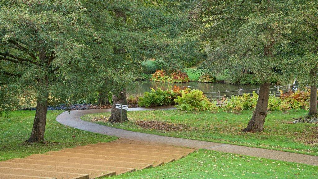 Savill Garden featuring a pond and a garden