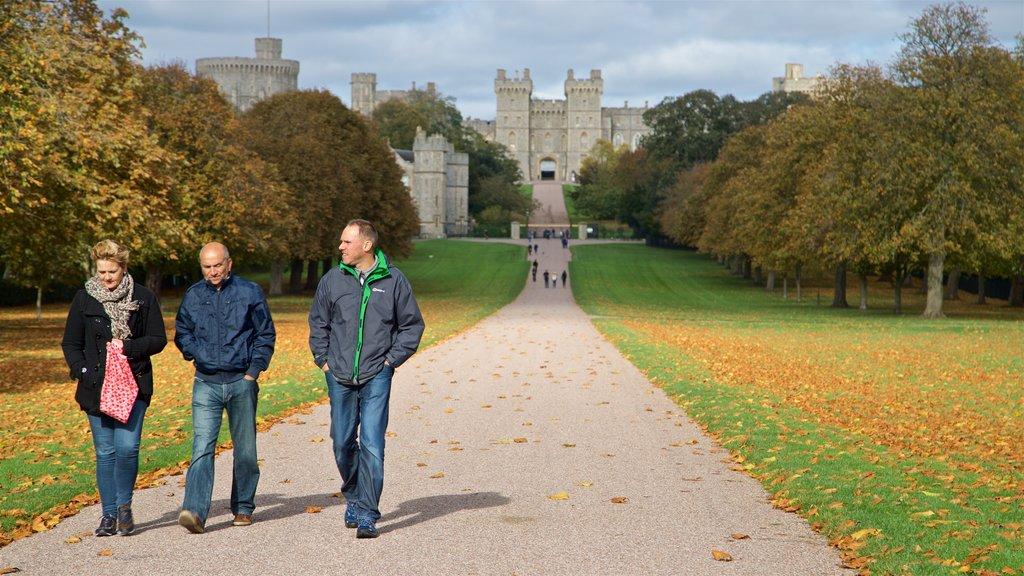 Windsor mostrando los colores del otoño y un jardín y también un pequeño grupo de personas