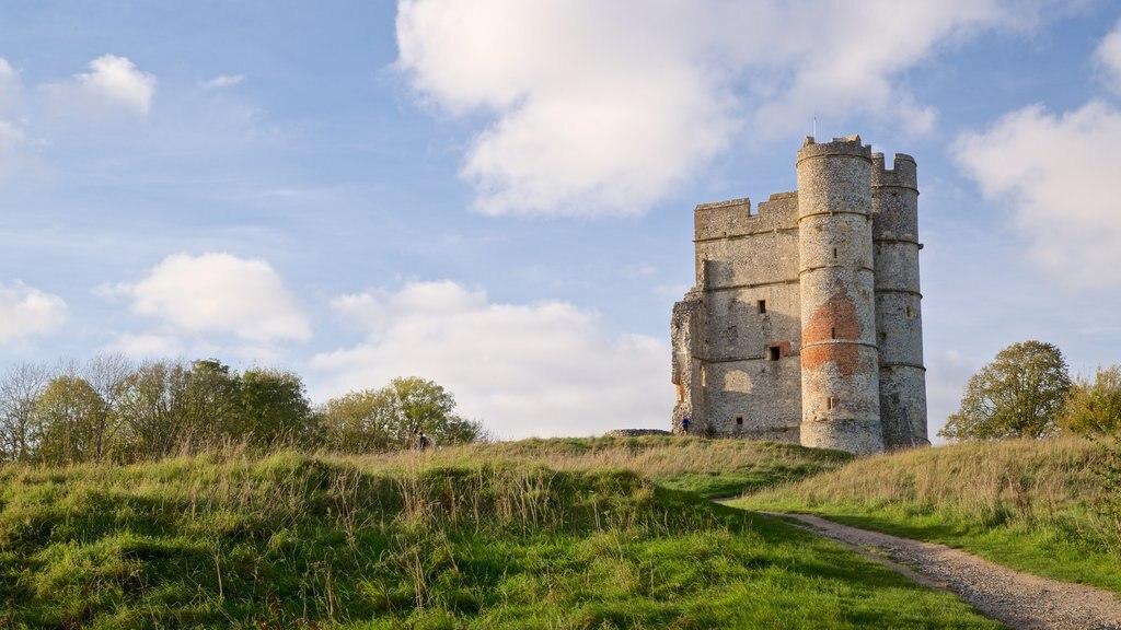 Donnington Castle ofreciendo ruinas de edificios, patrimonio de arquitectura y vistas de paisajes