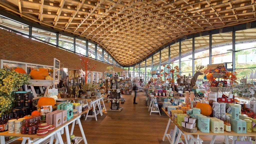 Savill Garden featuring interior views