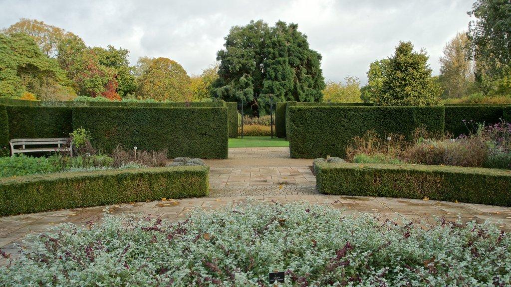 Savill Garden which includes a park
