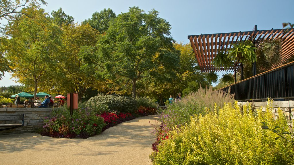 Morton Arboretum which includes wildflowers and a park