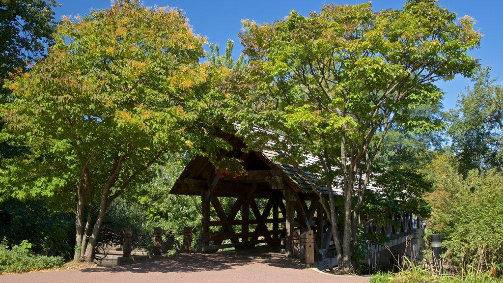 Naperville showing a bridge