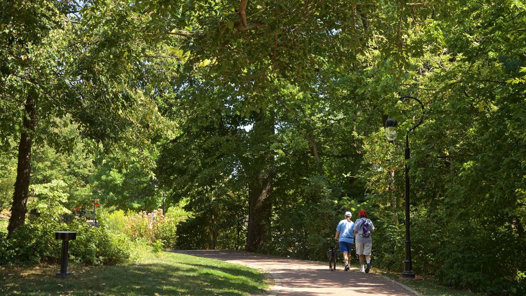 Naperville which includes a garden and hiking or walking as well as a couple