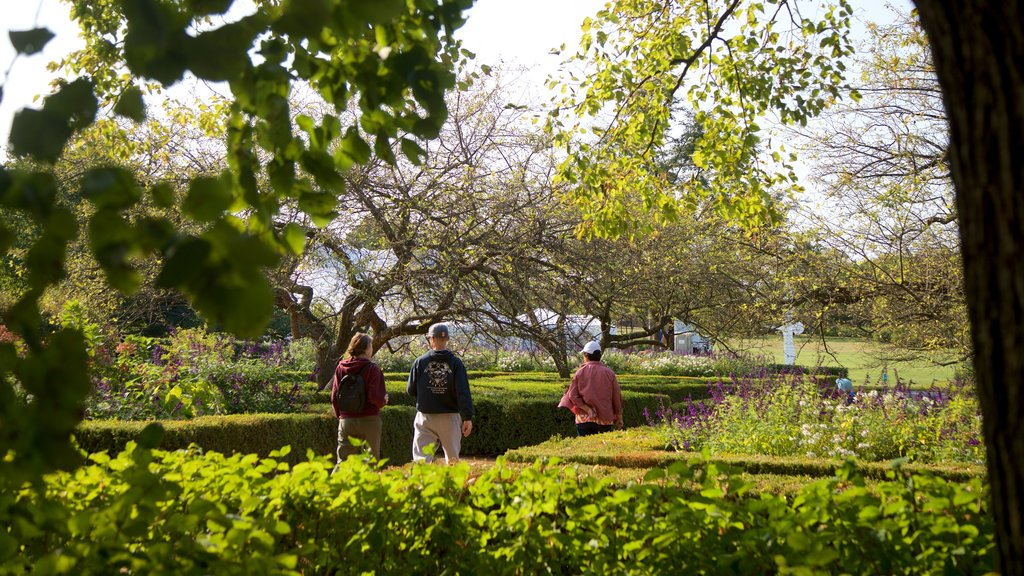 Morton Arboretum featuring a garden and wildflowers as well as a small group of people