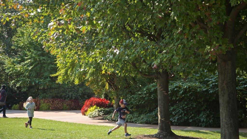 Morton Arboretum featuring a garden as well as children