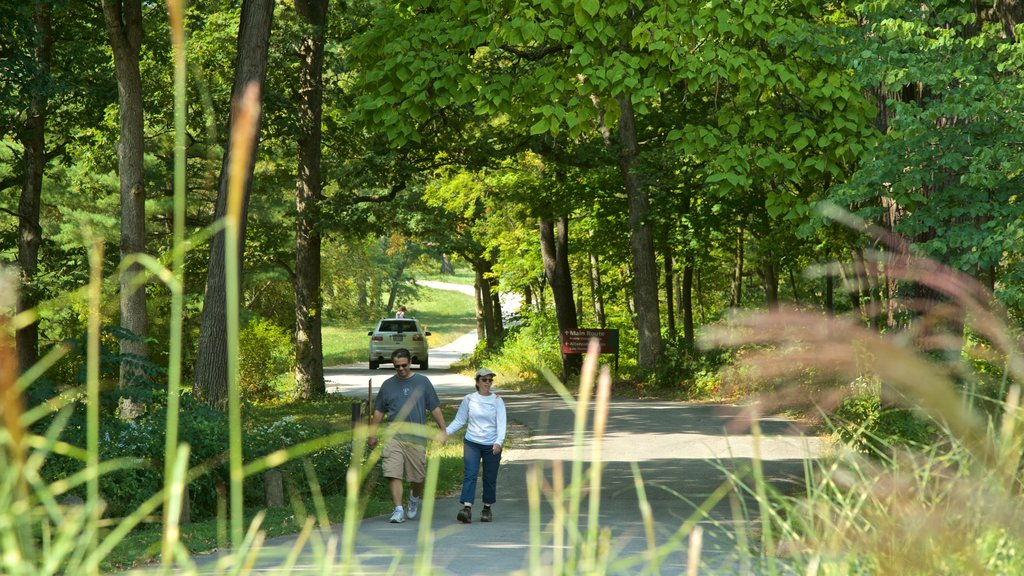Morton Arboretum which includes a garden and hiking or walking as well as a couple