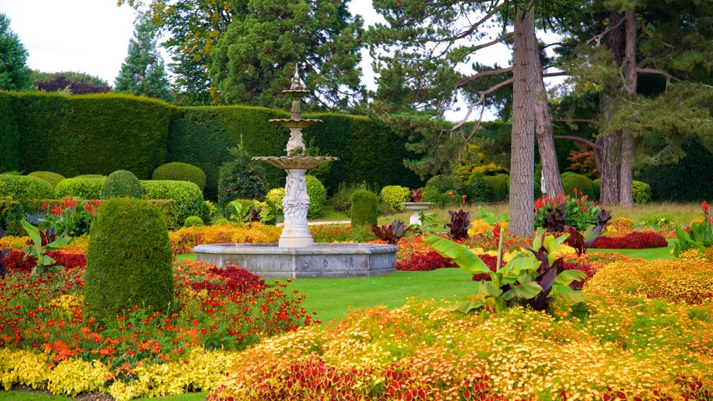Brodsworth Hall featuring wildflowers, a fountain and a park
