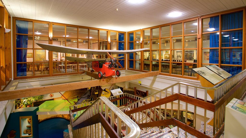 Doncaster Museum and Art Gallery which includes interior views