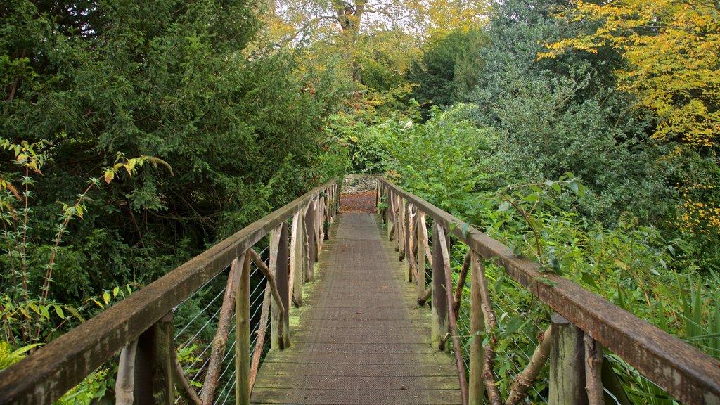 The Plantation Garden featuring a bridge