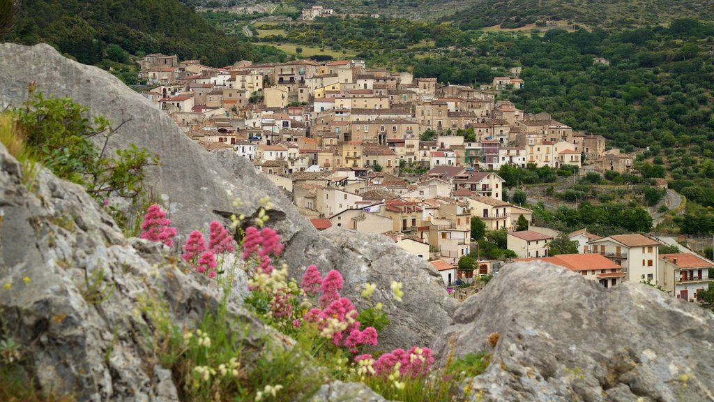 Civita featuring a small town or village and wildflowers