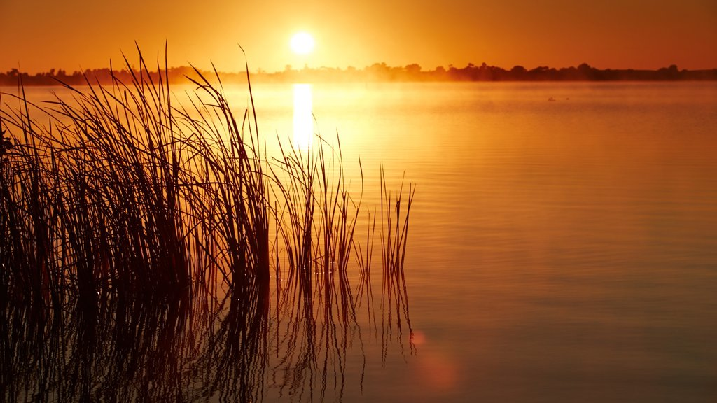 Swan Hill which includes wetlands and a sunset
