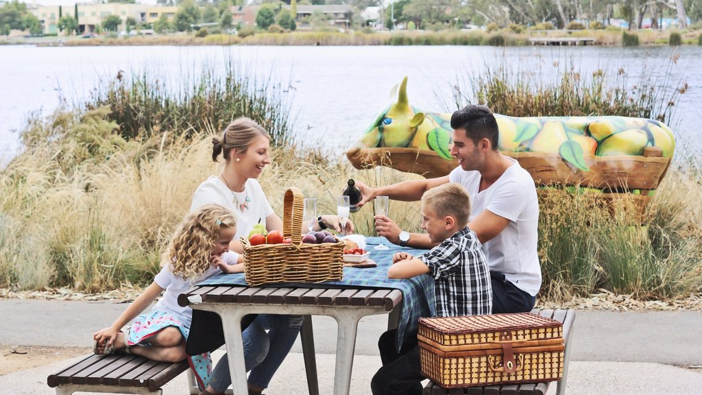 Shepparton showing food and picnicing as well as a family