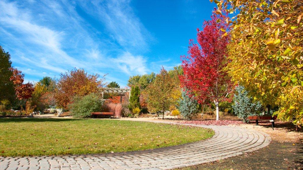 Rancho San Rafael Park que incluye los colores del otoño y un jardín