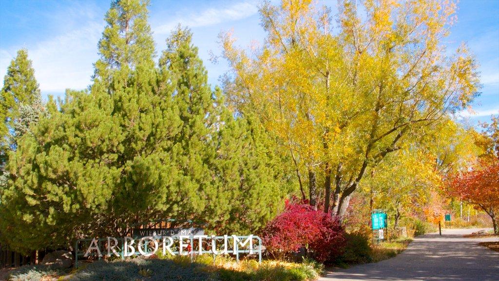 Rancho San Rafael Park ofreciendo paseos, vistas de paisajes y un jardín