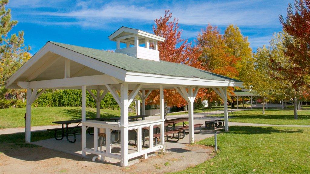 Rancho San Rafael Park mostrando un jardín y los colores del otoño