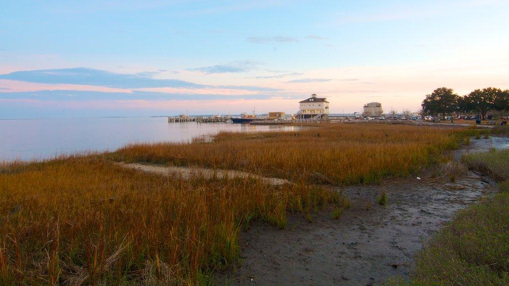 Charleston Waterfront Park mostrando hojas de otoño, vistas de paisajes y vistas generales de la costa