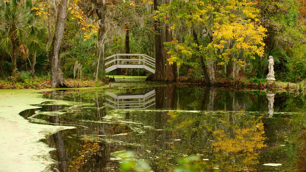 Magnolia Plantation and Gardens featuring a pond, landscape views and a garden
