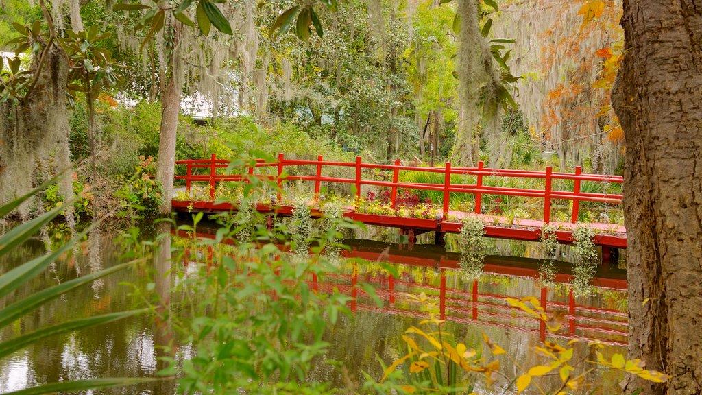 Magnolia Plantation and Gardens mostrando un jardín, hojas de otoño y un estanque