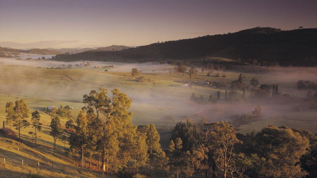 Hunter Valley que incluye vistas de paisajes y neblina o niebla