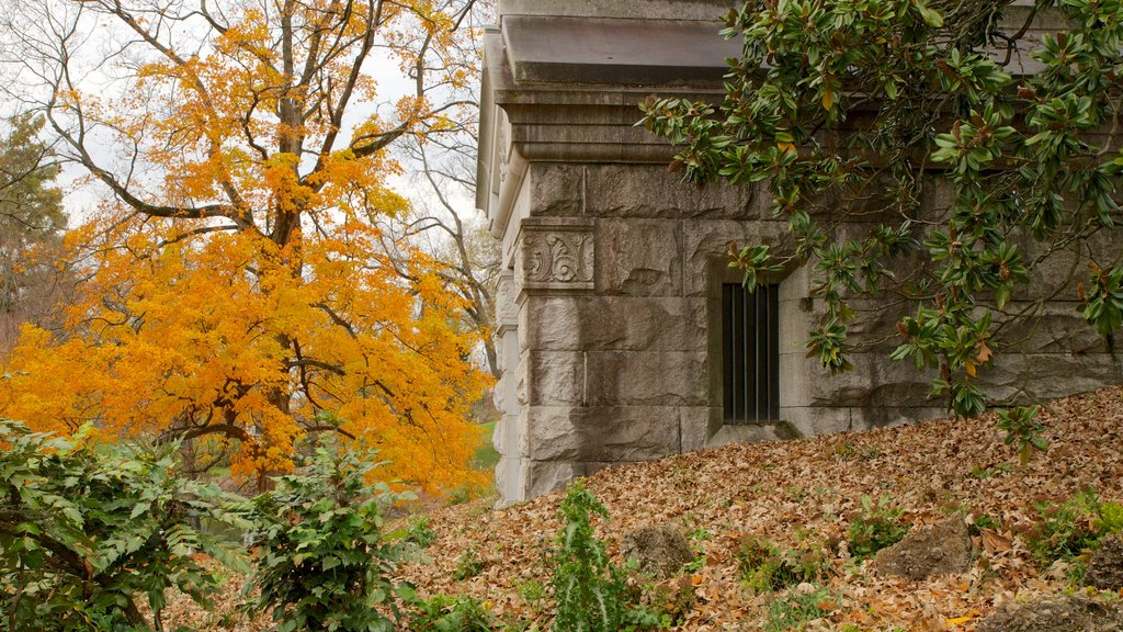 Spring Grove Cemetery featuring autumn leaves, a cemetery and a memorial