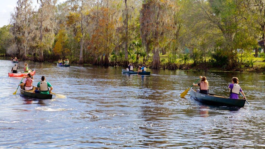 Lettuce Lake Park ofreciendo un río o arroyo, un jardín y kayak o canoa