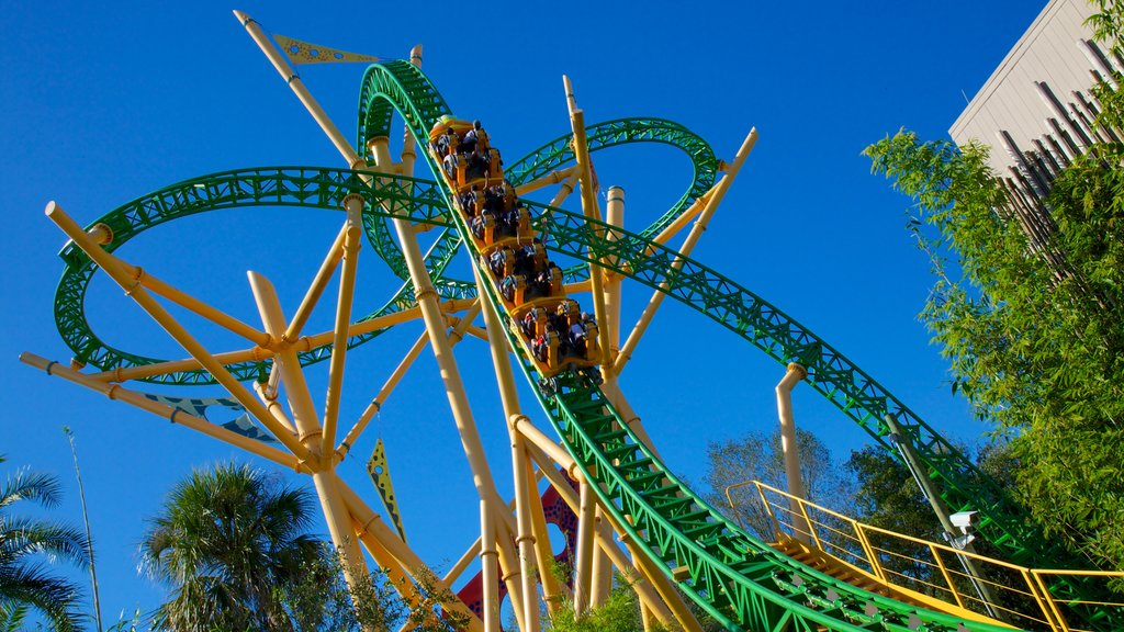 Busch Gardens which includes rides