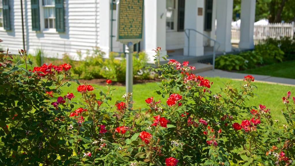 Kempf House showing wildflowers